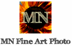 MN Fine Art Photo l Photography by Melissa Niederkorn